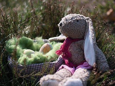 Nanchen Hase Kallisto Hase Ostern